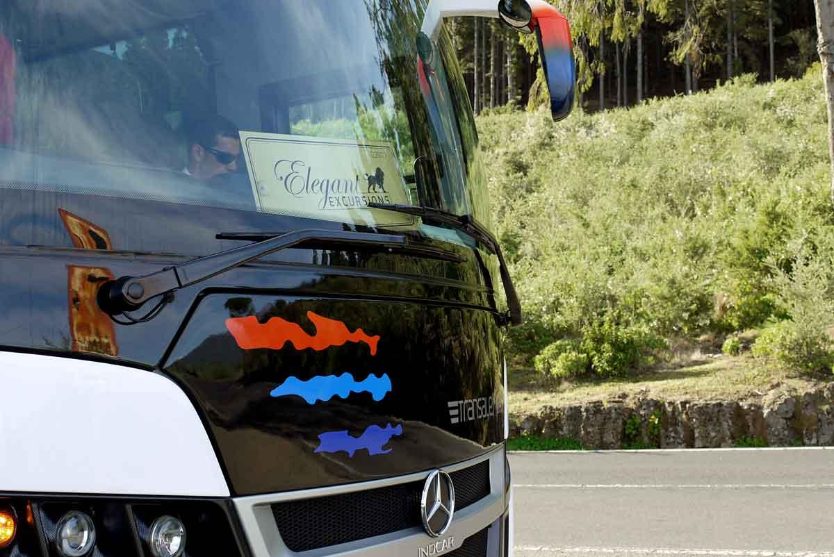 Elegant - durch alle Haarnadelkurven_unser Busfahrer auf der TF 21