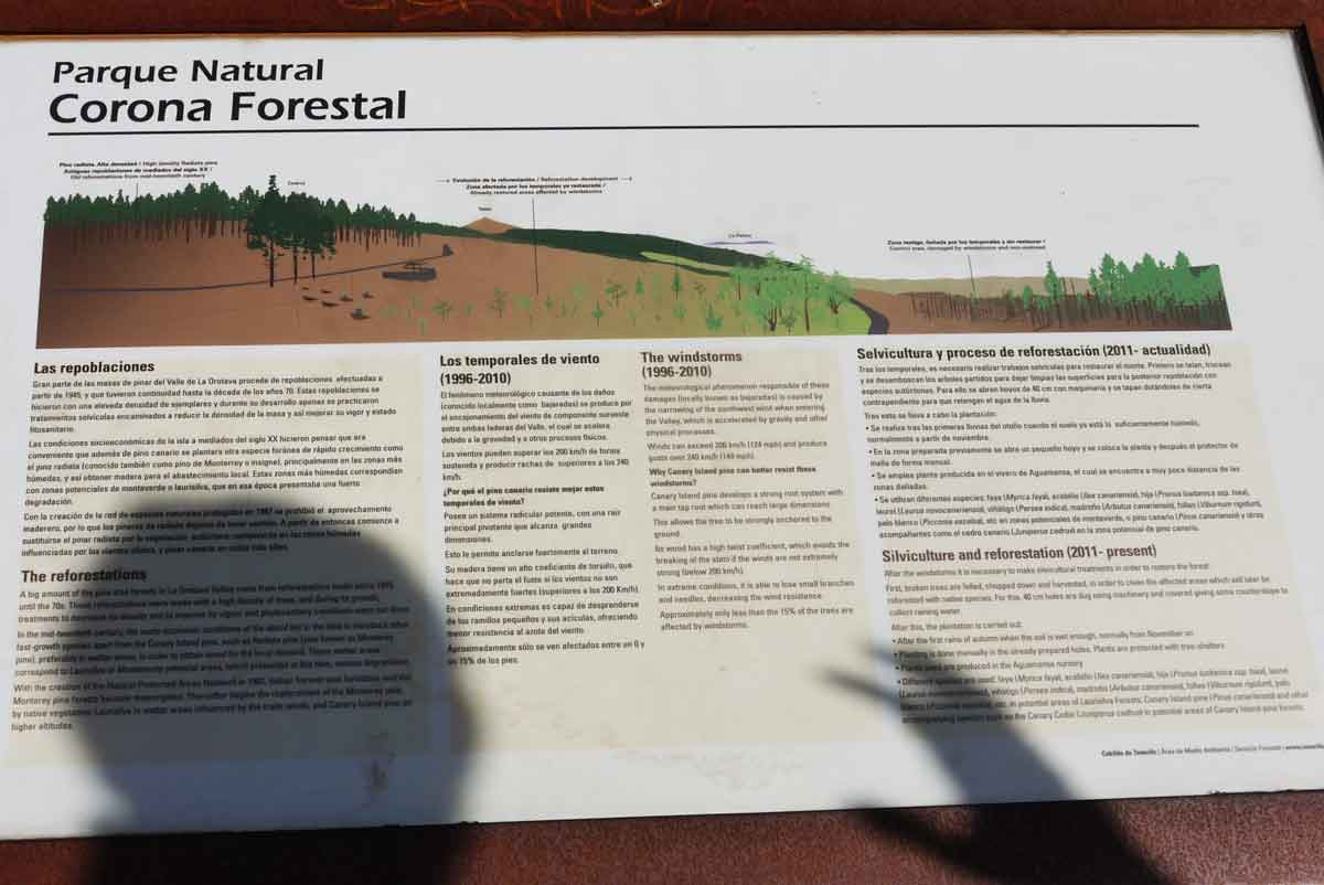 Parque Natural - Corona Forestal