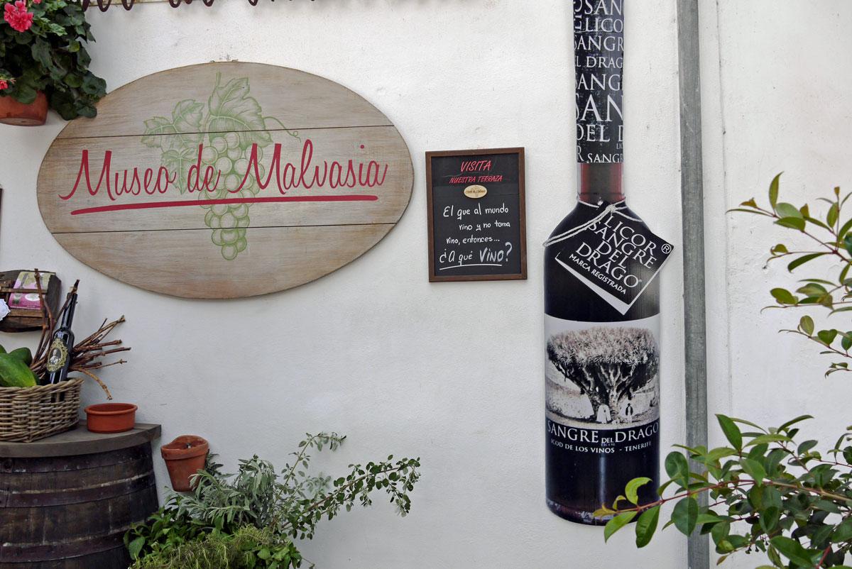 Museo de Malvasia_Weinverkostung - Bodega_Icod de los Vinos