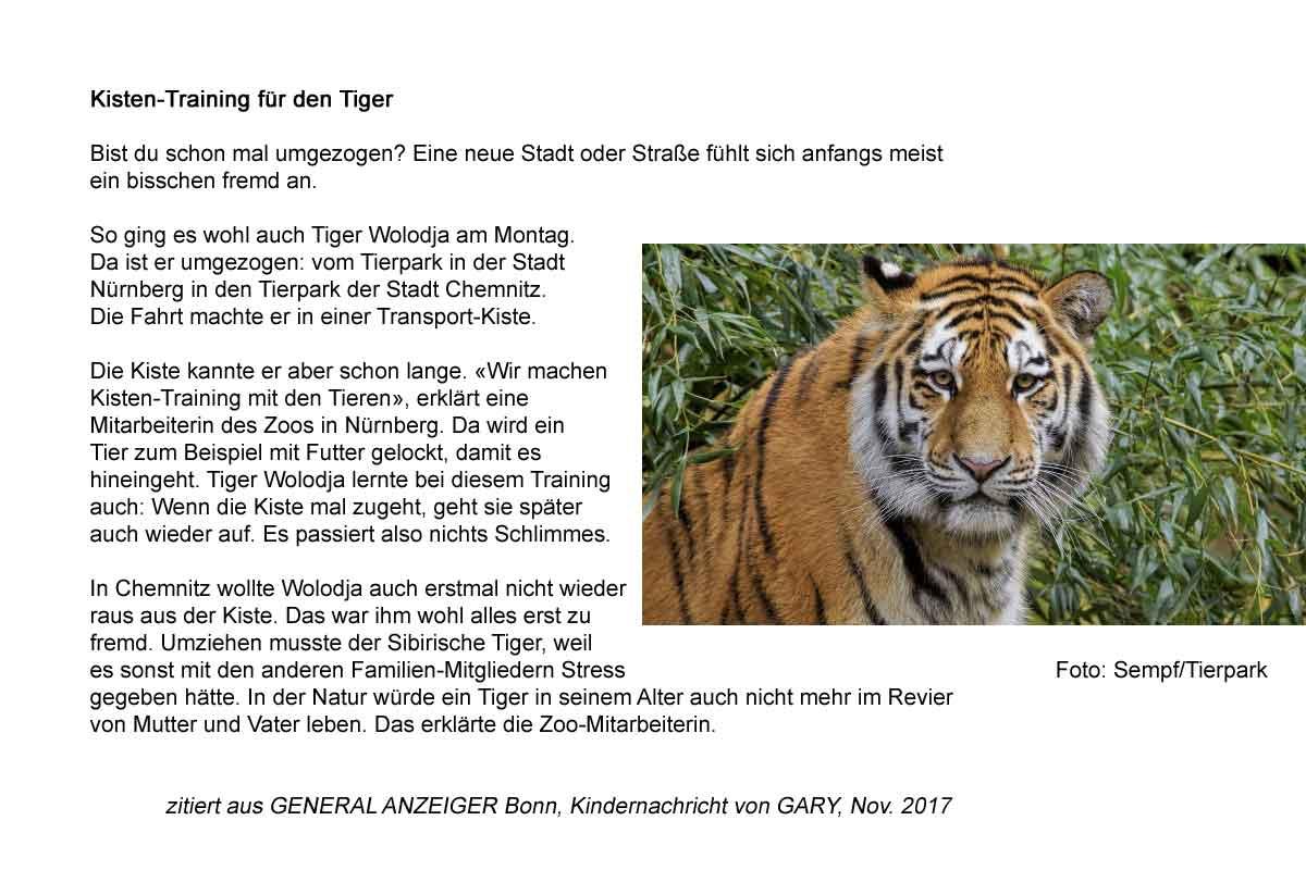 Kistentraining für Tiger Wolodja