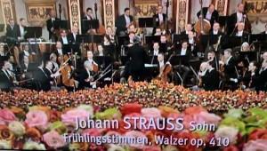 Frühlingsstimmen - Walzer op. 410_Johann Strauss Sohn_IMG_E0430