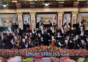 Kaiserwalzer op. 437_Johann Strauss Sohn_IMG_0851