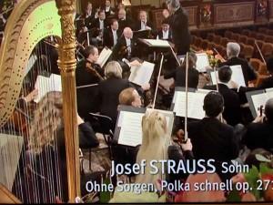 Ohne Sorgen - Polka schnell op. 271_Josef Strauss Sohn_IMG_1070